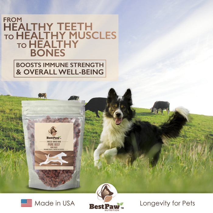 Freeze Dried Raw Dog Food