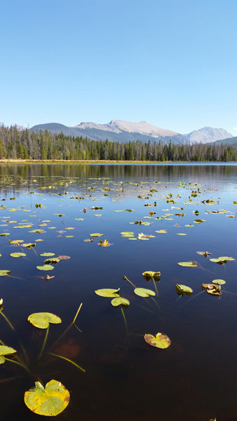 Strawberry Lake Grand County Colorado