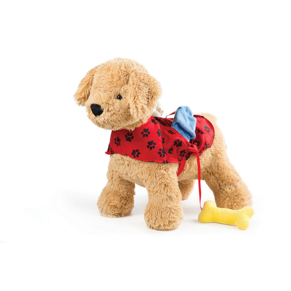 Puppy Activity Toy