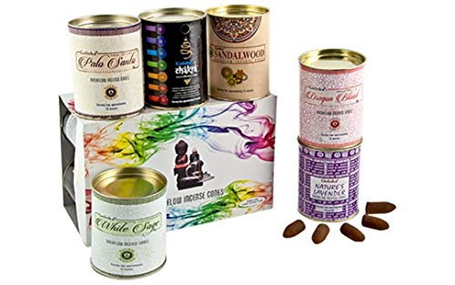 GOLOKA Backflow Assorted Incense Cones - Sandalwood, Lavender, Palo Santo, White Sage, Dragons Blood, Chakra - 24 Cones per Pack - 144 Cones Total