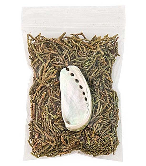 Juniper Leaves & Mini Abalone Set - 3x4 Bag