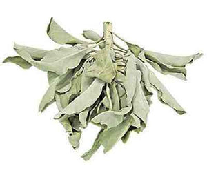 California White Sage Leaves & Clusters - 1 Pound