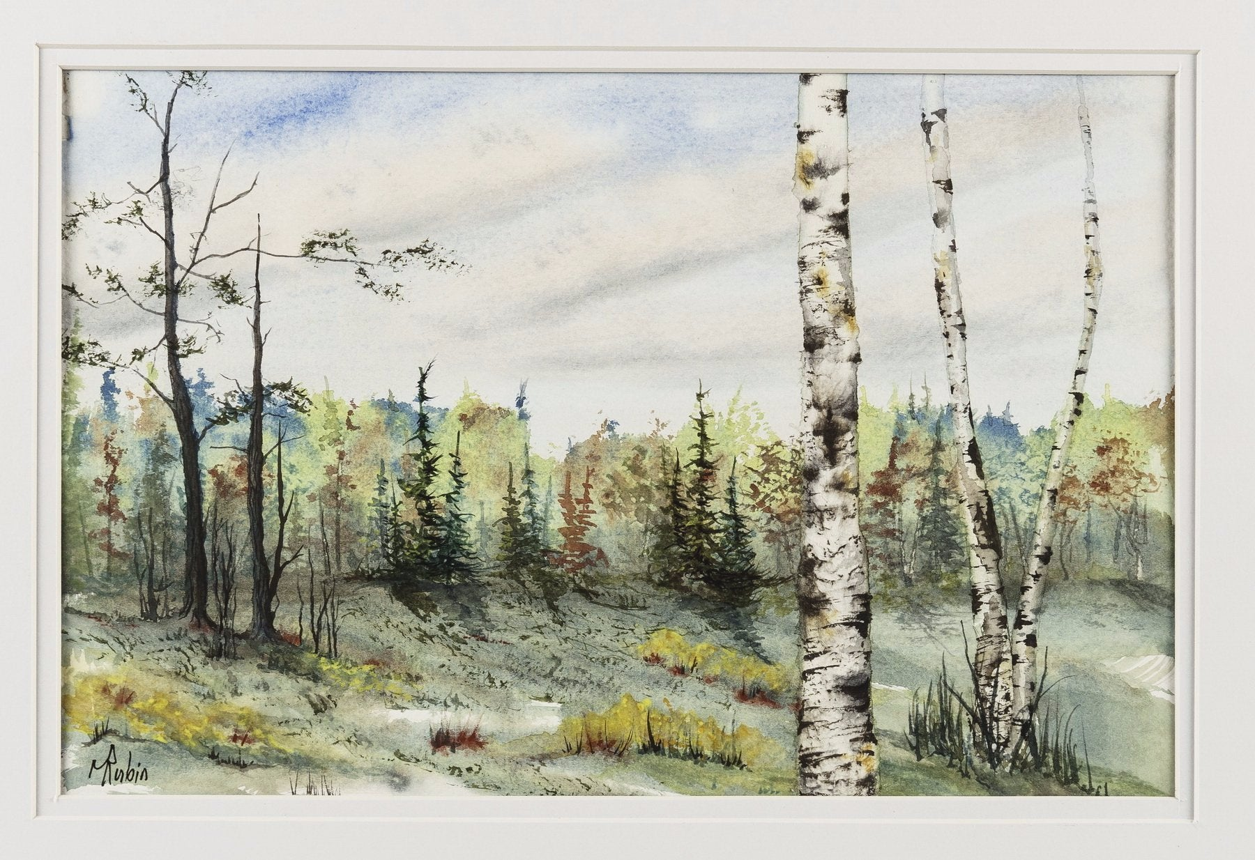 "Watercolor Painting - ""Birches"" - CreativeCollection"