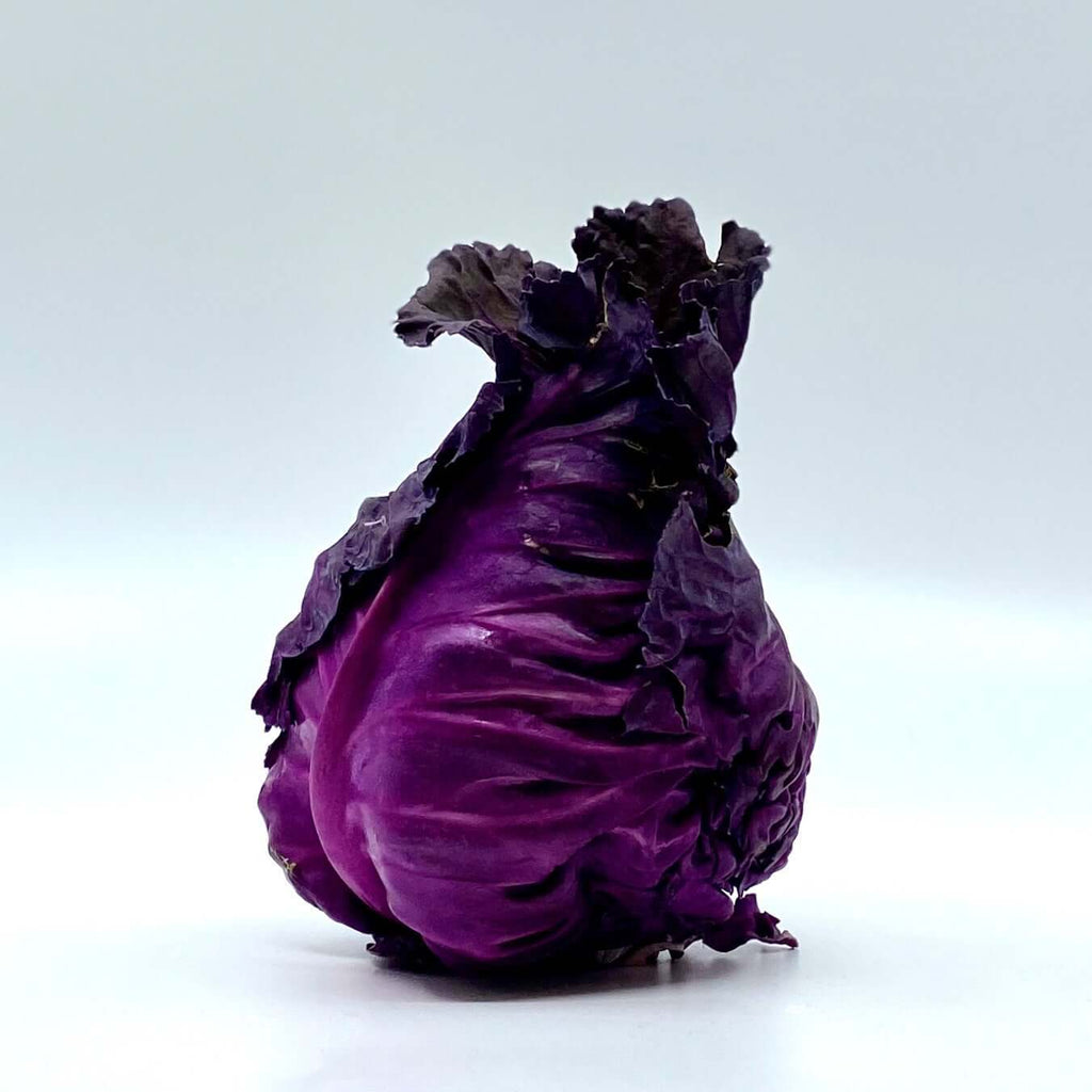 Rideau Pine Farm - Purple Cone Cabbage