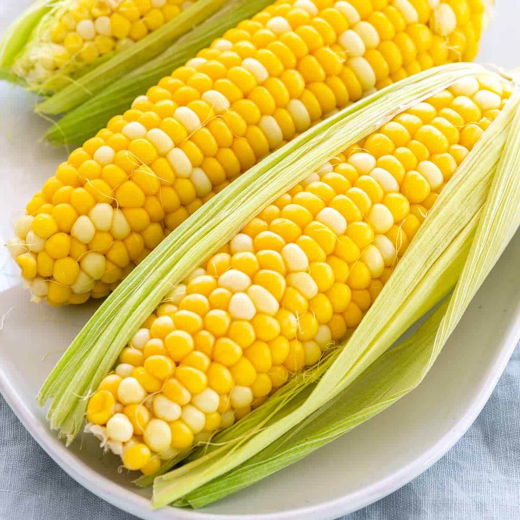 Rideau Pines Farm- Sweet Corn