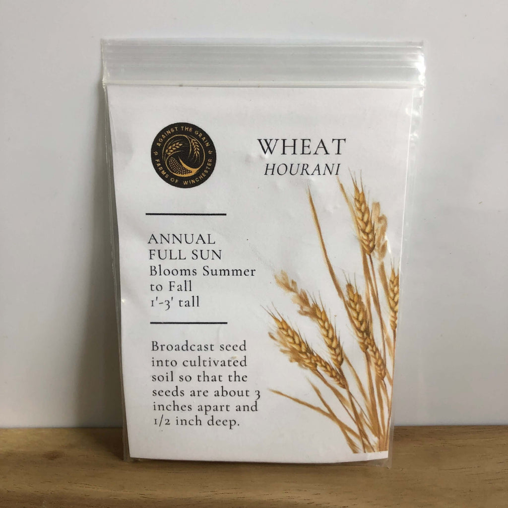 Against The Grain- Wheat Hourani Seeds