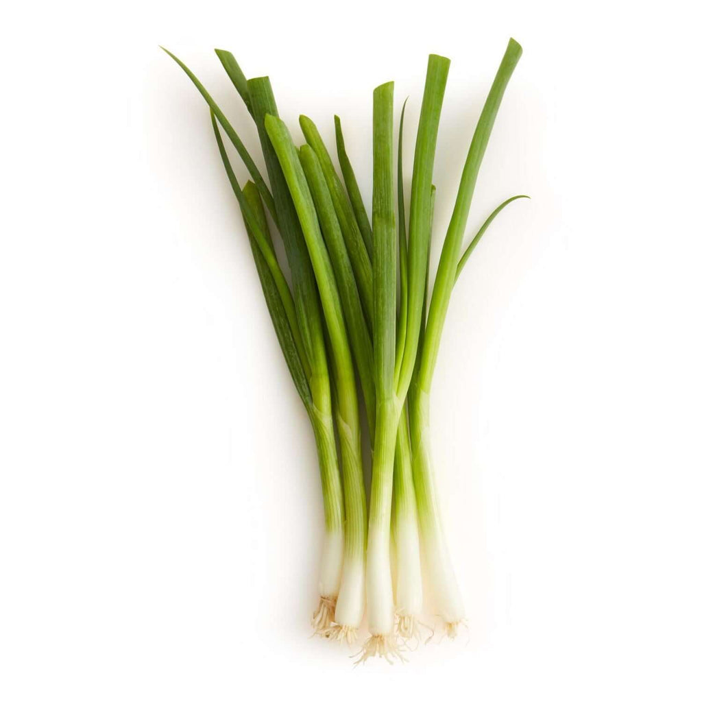 Orleans- Green onion (bunch)