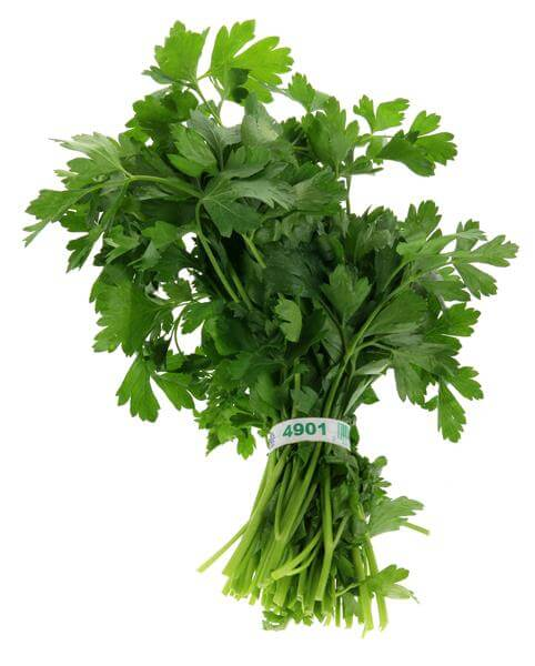 Orleans- Parsley (1 bunch)