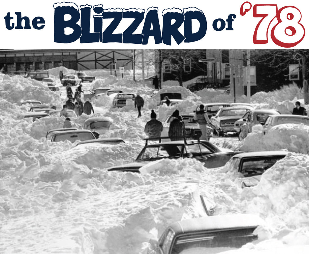 Blizzard of 1978 | Michigan | The Mitten State
