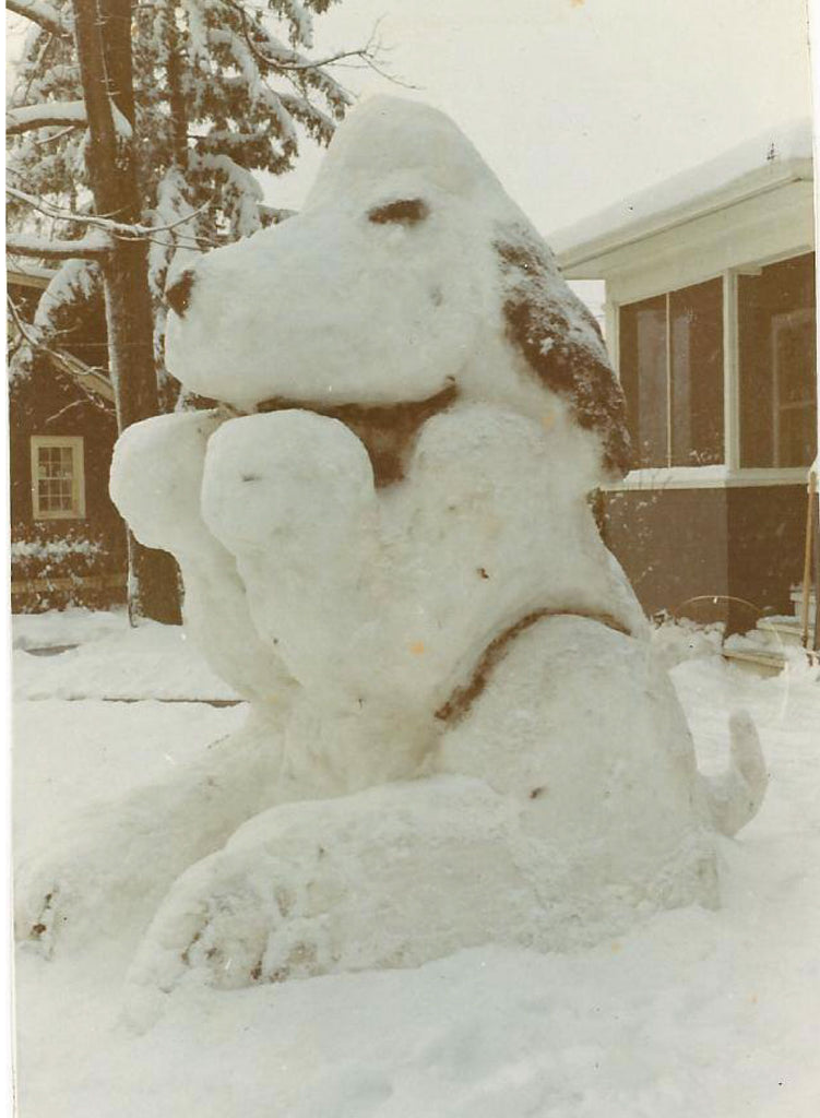 Snoopy | Blizzard of 1978 | The Mitten State