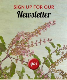 Sign up for the EcoTeas Newsletter