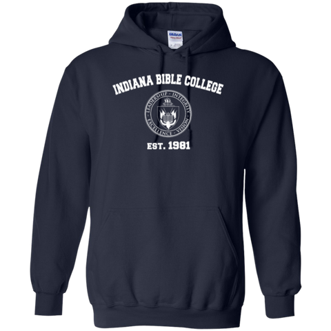 Image of IBC - Pullover Hoodie - Vintage Design - Kick Merch - 2