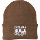 IBC - Clean Text - Knit Cap - Kick Merch - 13