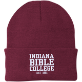 IBC - Clean Text - Knit Cap - Kick Merch - 2