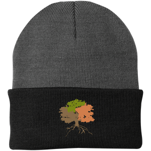 The Sanctuary - Knit Cap