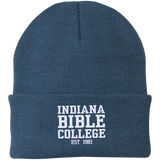 IBC - Clean Text - Knit Cap - Kick Merch - 12