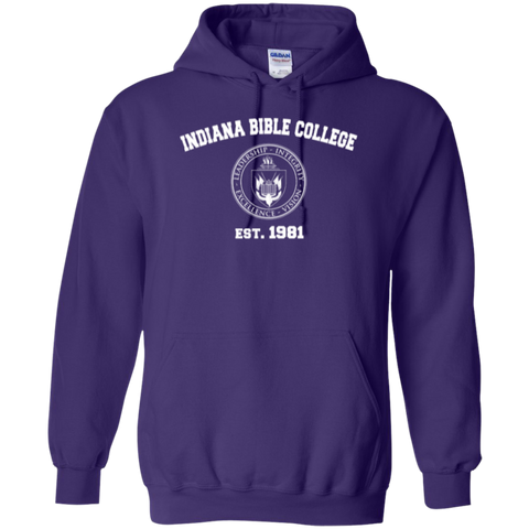 Image of IBC - Pullover Hoodie - Vintage Design - Kick Merch - 5