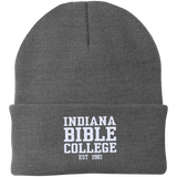 IBC - Clean Text - Knit Cap - Kick Merch - 3