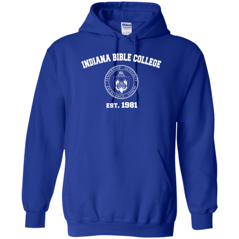 Image of IBC - Pullover Hoodie - Vintage Design - Kick Merch - 7