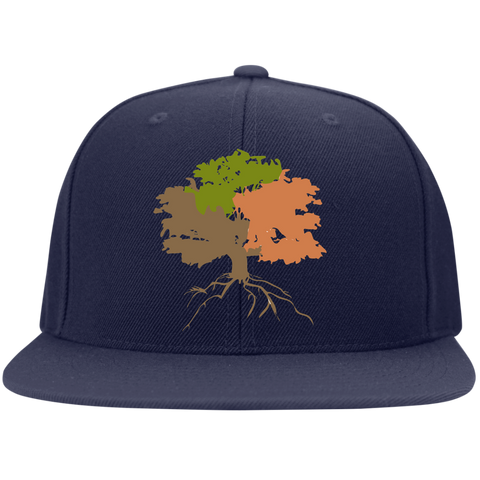 Image of The Sanctuary - Flat Bill Snapback Hat