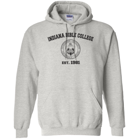 Image of IBC - Pullover Hoodie - Vintage Design - Kick Merch - 8