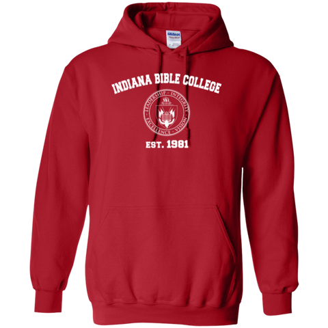 Image of IBC - Pullover Hoodie - Vintage Design - Kick Merch - 6