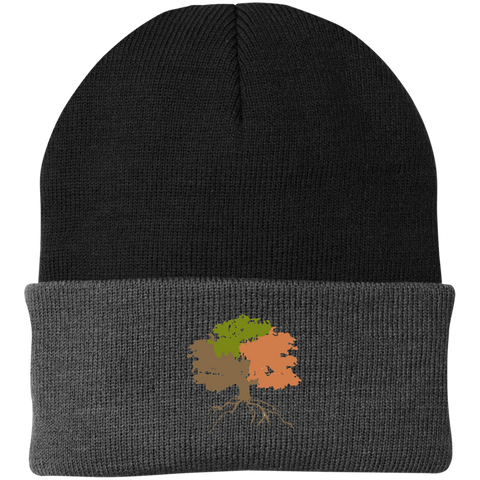 Image of The Sanctuary - Knit Cap
