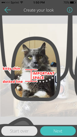 Image showing a cat's face well within the dotted line