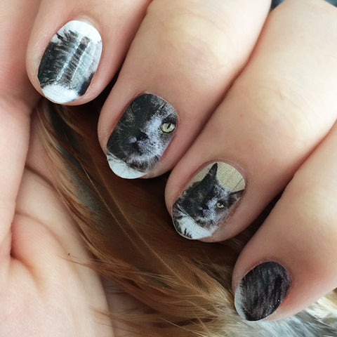 Image of NailSnaps made from a picture of a cat, with its face well within the nail.
