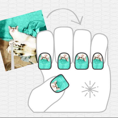 Image of NailSnaps made of a cat lying down, and the background is artificially colored in.