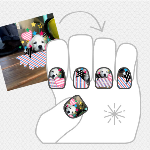 Image showing NailSnaps made with a picture of a dog with lots of stickers and color around it.