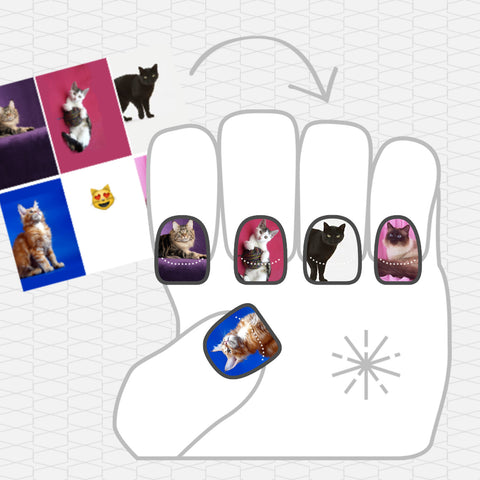 Image showing NailSnaps made with a collage of cats in front of colorful backgrounds.