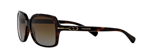 COACH HC 8116 - L087 BLAIR -  - Sunglasses - Sunglass Trend - 6