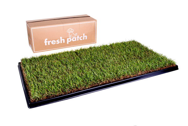 Fresh Patch  LARGE- for pets over 12kg
