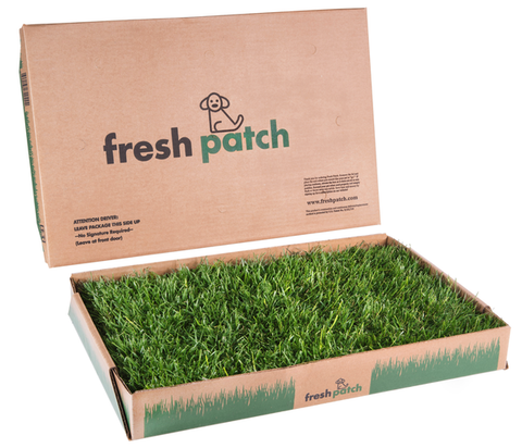 Fresh Patch SMALL- For pets 5kg to 12kg