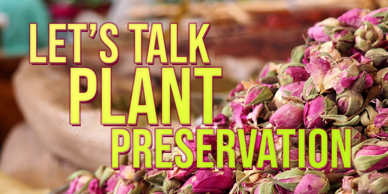 Let's talk plant preservation