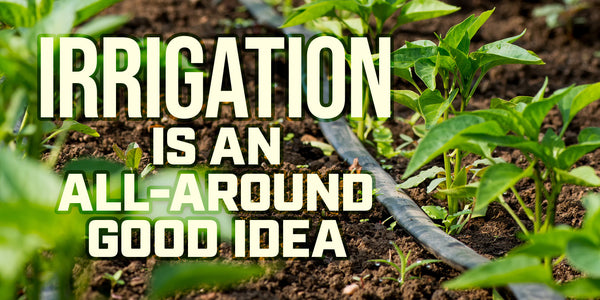 Irrigation is an all-around good idea