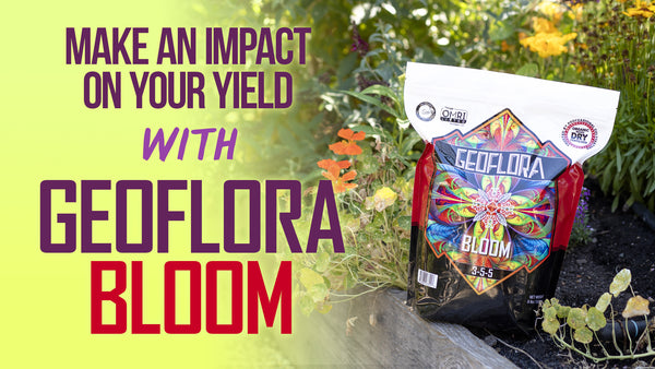 Make an Impact on your yield with Geoflora BLOOM