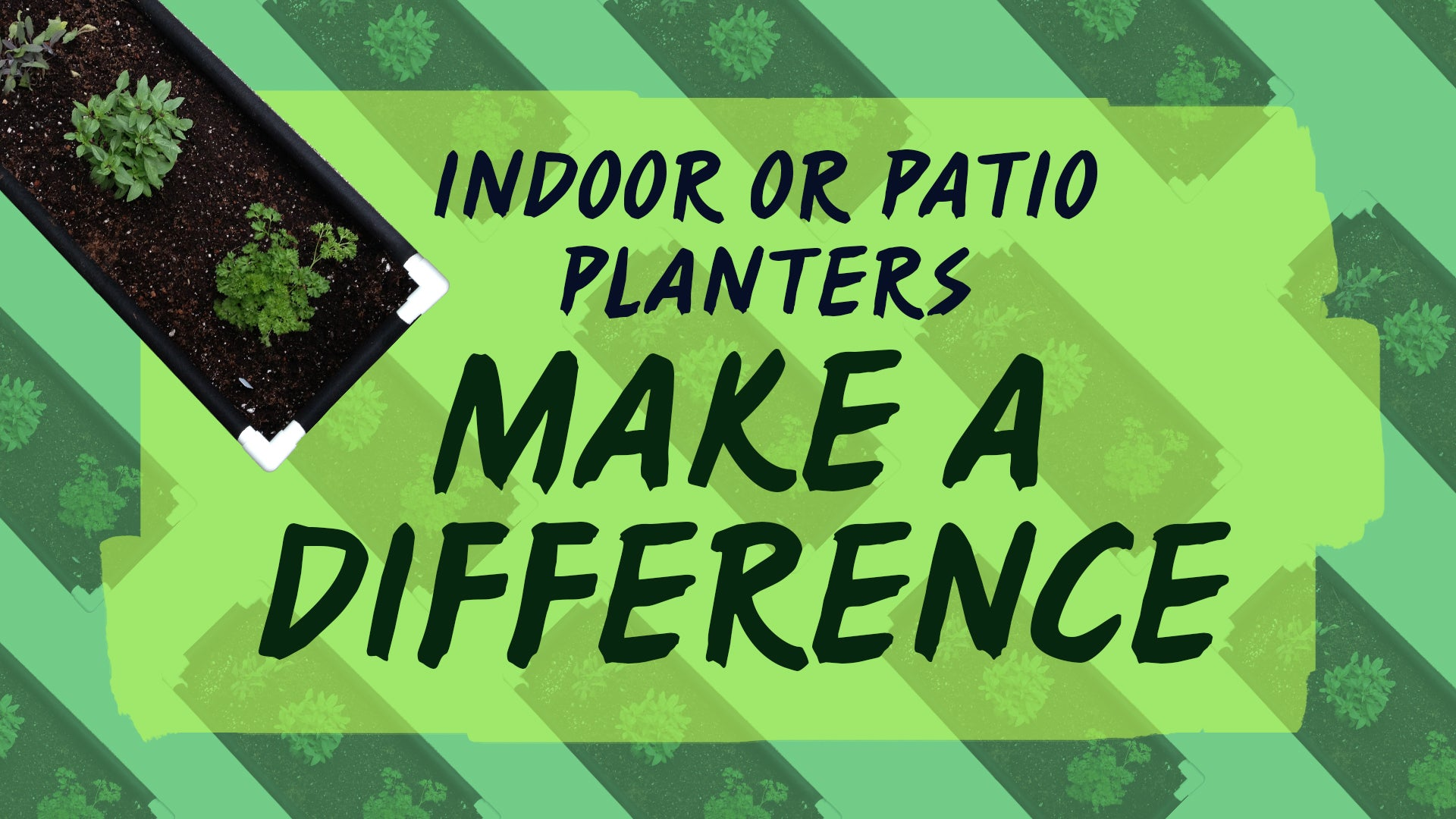 Indoor or patio planters make a difference