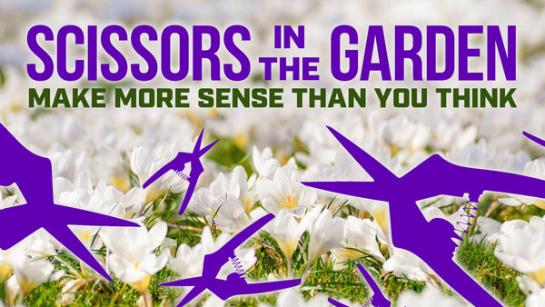 Scissors in a garden make more sense than you might think