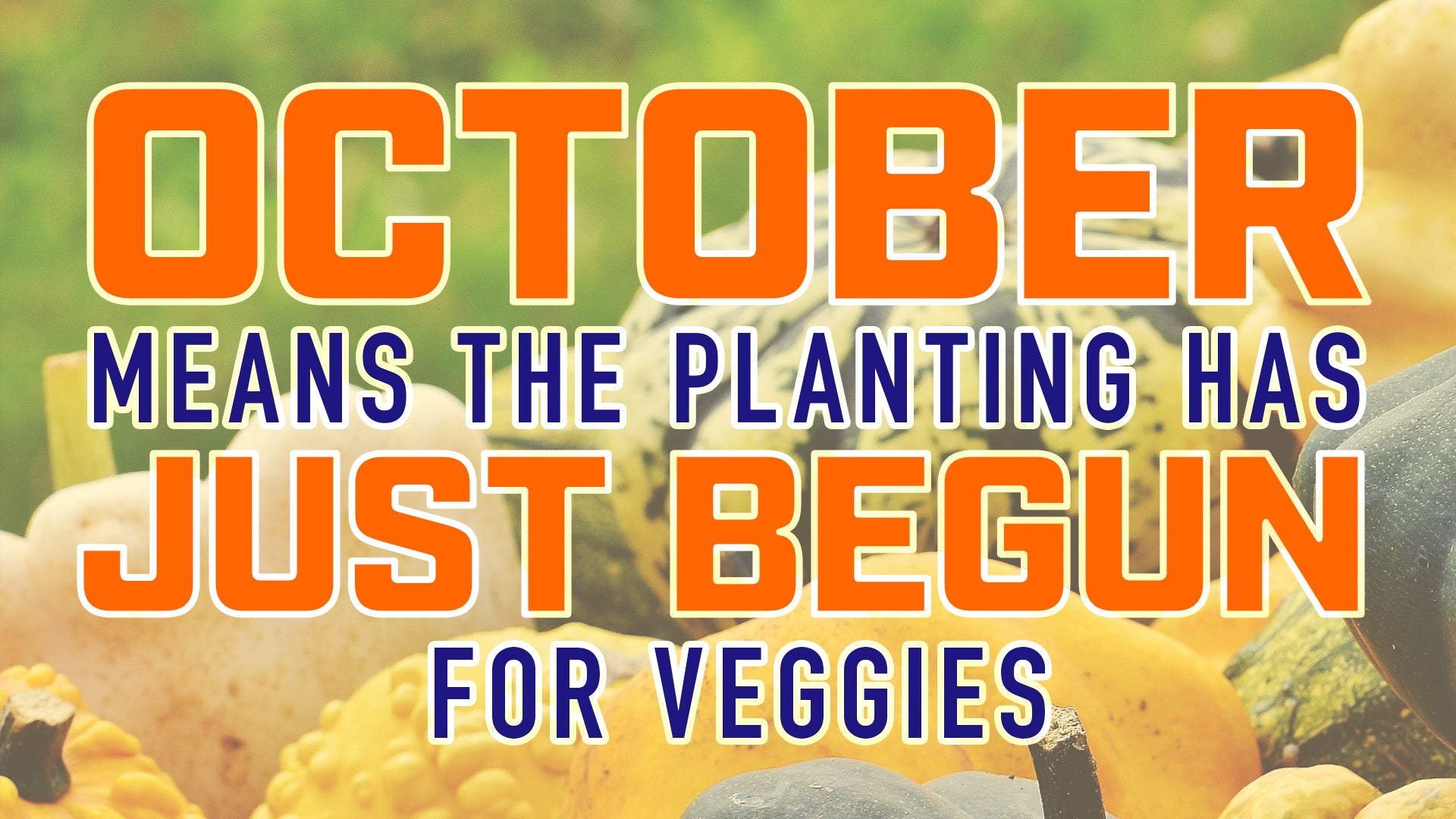 October means planting has just begun for veggies
