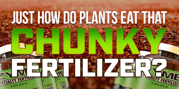Just how do plants eat that chunky fertilizer?