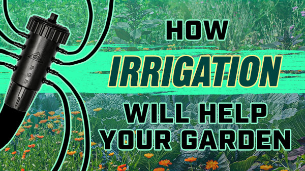 How irrigation will help your garden