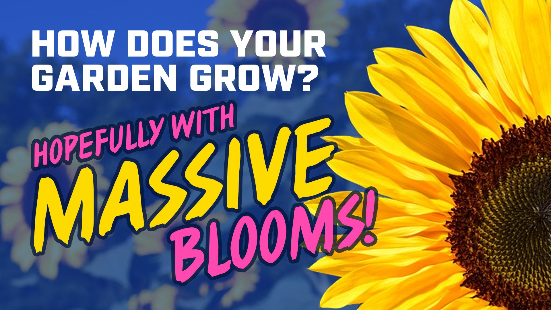 How does your garden grow? Hopefully with MASSIVE blooms!