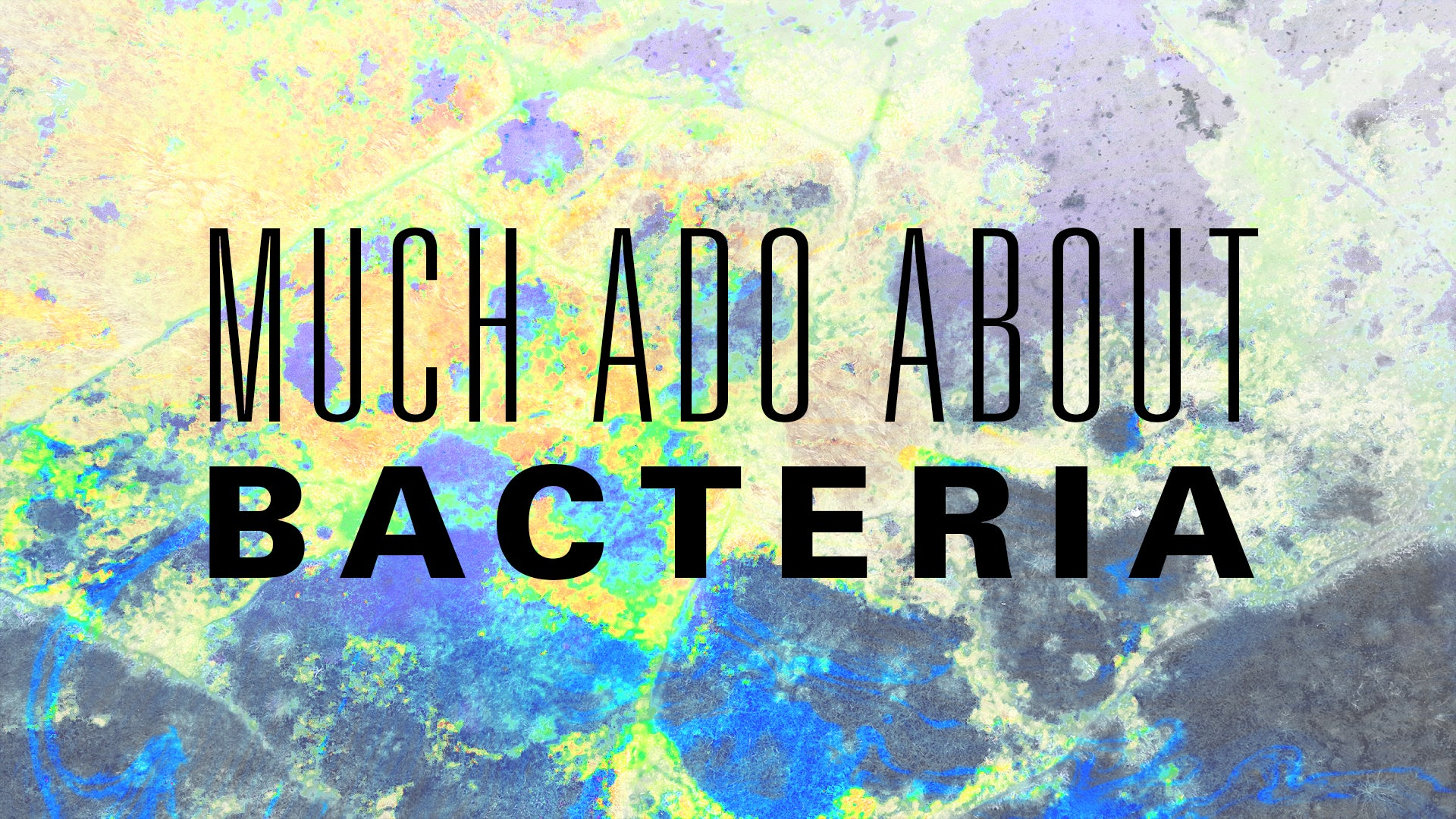 Much Ado About Bacteria