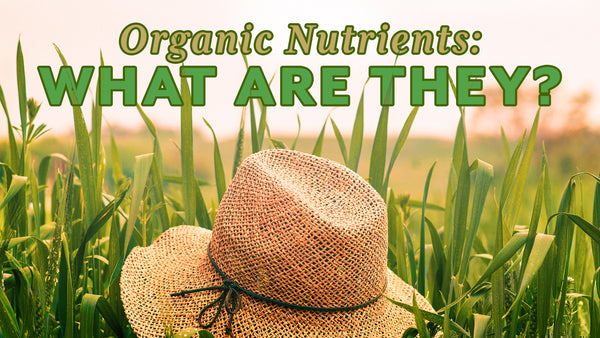Organic nutrients. What are they?