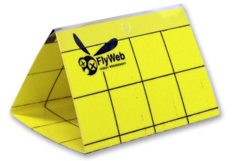 FlyWeb monitor card