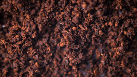 Soil with healthy bacteria looks a-ok!