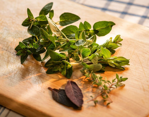 Culinary herbs for drying