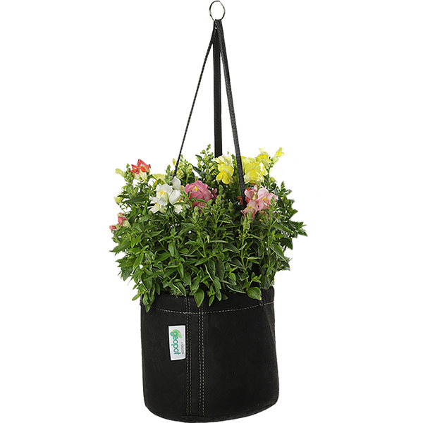 Hanging Garden - Left Coast Wholesale